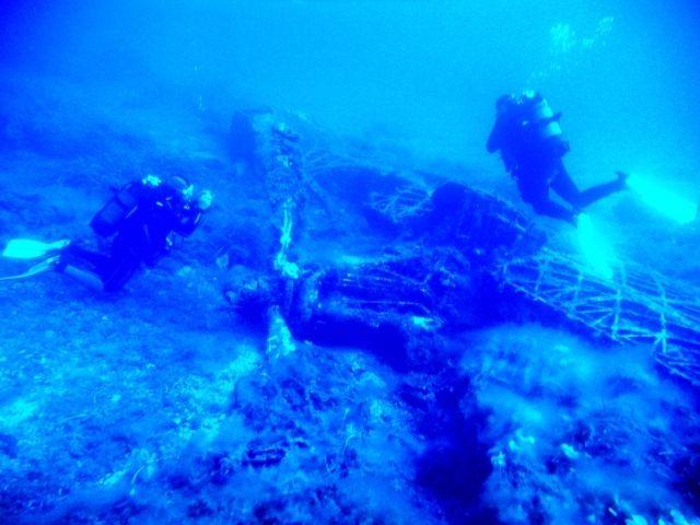 Agenzia operatore turistico posidonia blu diving center egadi favignana - Dive center blu ...